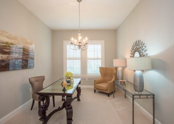 Lot 5 staged interior LoRes-010